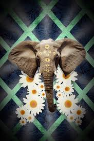 cool elephant wallpaper elephant wallpaper by alexhorakdesigns on deviantart