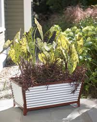 short galvanized self watering trough planter gardeners com