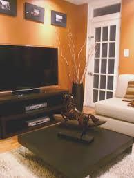 burnt orange paint color living room