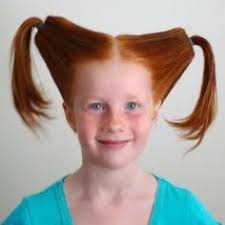 hair styles in two ponies funny hairstyles for girls hairstyle for women