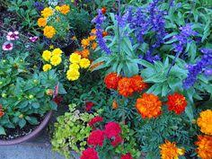 Backyard Flower Garden Ideas Backyard Flower Garden Ideas Outside Plant Designs Pinterest