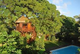 chambres d hotes ile maurice tree lodge mauritius chambres d hôtes mare