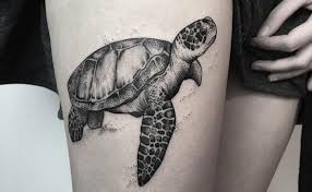 100 sea turtle tattoos drawn sea turtle native turtle