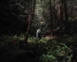 in the woods annotation tuesday powers and the in the woods
