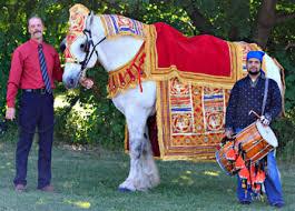 Indian Wedding Decorators In Ny East Indian Wedding Baraat U0026 Vidai Buffalo Ny Erie County Wny