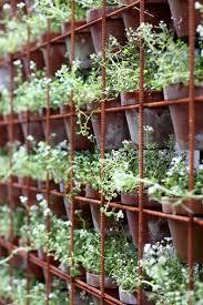 best 25 herb wall ideas on pinterest wall herb garden indoor