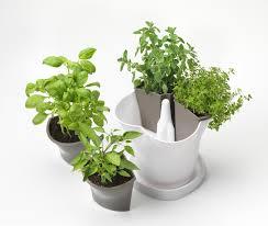 Self Water Pot Self Watering Herb Pot U2013 Rseapt Org