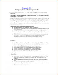 sample business plan for sales territory