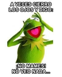 Memes Rana Rene - memes de la rana rene memefrases