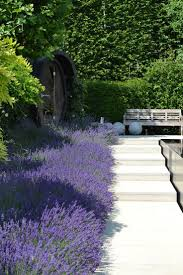 Modern Landscaping Ideas For Small Backyards by Best 20 Modern Landscape Design Ideas On Pinterest Modern