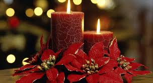 christmas flowers christmas flowers edwige boutique florist mauritius