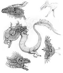 various dragon sketches by shadowelite951 on newgrounds
