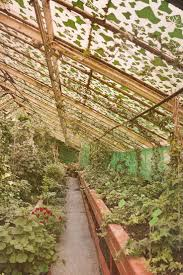 Urban Garden Center Maine 602 Best Hydroponics Images On Pinterest Greenhouses Vegetable