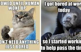 Time Meme - 25 bored memes that are so boring they actually stop time