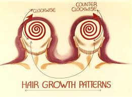 how hair growth patterns face shape and features influence
