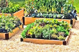 Raised Garden Bed Designs Triyae Com U003d Burkes Backyard Raised Garden Beds Various Design