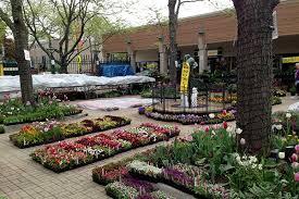 hyde park garden fair preview 2015 avoision avoision