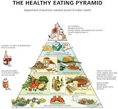 the new food pyramid more fruit and veg fewer carbohydrates and