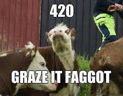 Berk Meme - 420 graze it faggot berk cow quickmeme
