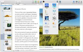 Best Program To Design Business Cards Ibooks Author Apple