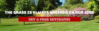 Fall Cleanup Landscaping by Leaf Removal Greensboro Nc Fall Cleanup Asheboro Spring
