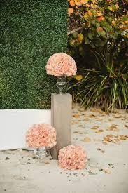 shima home decor miami fl 12 best plant hôtel design images on pinterest floral