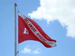 Deleware Flag Delaware Divers Club