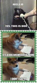 Dog On Phone Meme - this is dog the meta picture