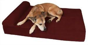Barker Dog Bed What Are The Best Dog Beds For Labs Product Reviews 2017 Pet