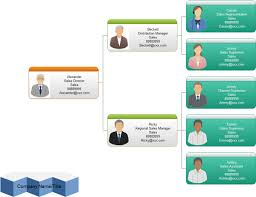 Template Organizational Chart by Management Organizational Chart Exles And Templates