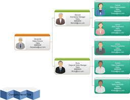 template organizational chart management organizational chart exles and templates