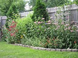 privacy fence ideas plants home u0026 gardens geek