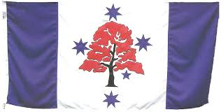Pictures Of The Australian Flag The Flame Tree Flag Of Illawarra New South Wales