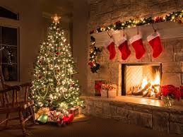 Decorative Trees In India Everything You Need To Know About Christmas Tree Times Of India