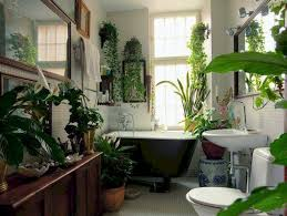 home plants 53 amazing ideas to display your indoor plants besideroom com