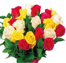 cheap flowers delivered best 25 cheap flowers delivered ideas on send flowers