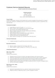 sales resume skills sales skills list for resume misanmartindelosandes