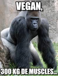 Gorilla Memes - gorille 300kg vegan on memegen