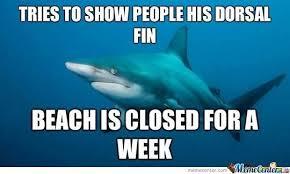 Shark Week Meme - in honor of shark week by meg11hyn meme center