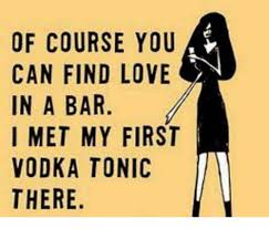 Of Course You Can Meme - of course you can find love in a bar i met my first vodka tonic