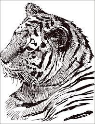 25 best dessin à colorier gratuit ideas on pinterest coloriage