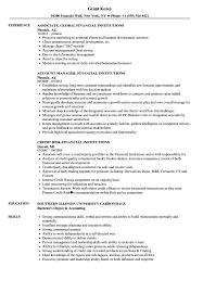 resume template financial accountants definition of terrorism financial institutions resume sles velvet jobs