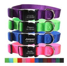 personalized collars 4 dogs custom collars with name plates