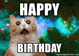 Cat Meme Maker - happy birthday cat meme 28 images happy birthday memes grumpy