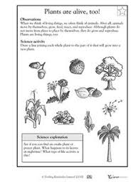 ideas collection first grade science worksheets on plants also