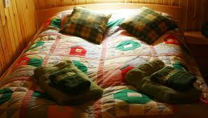 Treatment For Bed Bugs How To Prepare For Bed Bug Treatment Garden Guides