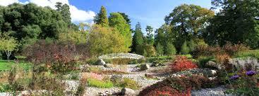 southon plants of dormansland surrey extraordinary nursery of