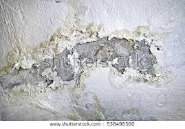 paint peeling in bathroom bathroom fungus easywash club