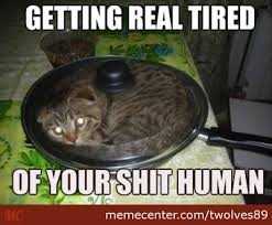 Getting Real Tired Meme - getting real tired of your shit human by recyclebin meme center