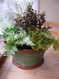 Arrangments by Five Steps To Quick Plant Arrangements In Pots The Pecks